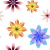 Kolorowych okwitnięć bezszwowy wzór, przejrzysty tło Obrazy Royalty Free
