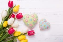 Koloru żółtego, czerwieni i bielu tulipanów kwiaty, i dwa serca na bielu Obrazy Royalty Free
