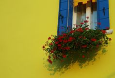 koloru żółtego dom z czerwonymi bodziszkami na wyspie Burano blisko Ven Fotografia Stock