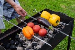 Koloru żółtego i pomarańcze pieprze oberżyna i pomidory na grillu, Zdjęcia Stock