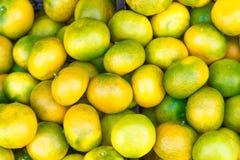 Koloru żółtego i zieleni mandarynki Fotografia Royalty Free