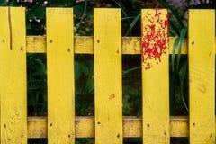 Koloru żółtego ogródu ogrodzenie zdjęcia royalty free