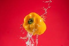 Koloru żółtego pieprz na Czerwonym tle fotografia stock