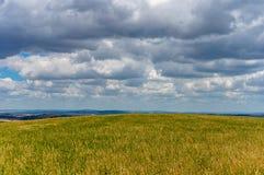 Koloru żółtego pole na chmurzącym dniu Obraz Royalty Free