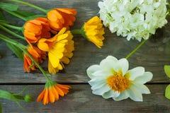 Koloru żółtego, pomarańcz i białych kwiaty na szarym starym drewnianym stole, Zdjęcia Stock