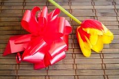 Koloru żółtego tulipan na drewnianym tle zdjęcie stock