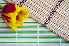 Koloru żółtego tulipan na drewnianym tle obrazy stock