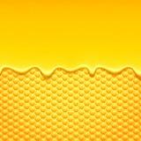 Koloru żółtego wzór z honeycomb i miodu kapinosami Fotografia Stock