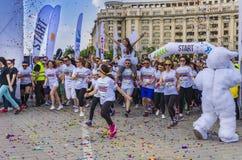 Koloru bieg Bucharest Zdjęcie Stock