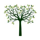 Koloru drzewo z liśćmi Wektorowi Ilustracyjni i graficzni elementy Obraz Stock
