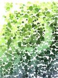 Koloru krok zieleń i żółty bąbla wzór Obraz Royalty Free