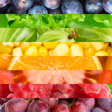 Koloru owoc, jagody i warzywa, Zdjęcia Stock