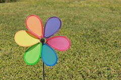 koloru pinwheel Obrazy Royalty Free