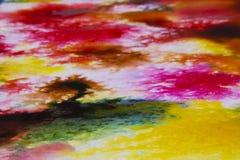 Koloru pluśnięcia holi zdjęcie royalty free