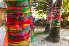 Koloru sukienny opakunek wokoło drzewa lub tkaniny siedem kolorów zdjęcie stock