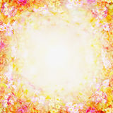 Koloru żółtego różowy rozmyty kwiecisty tło, kwiat rama Obrazy Stock