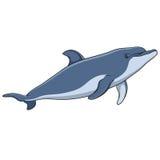 Koloru wektorowy wizerunek delfin zaciemnia royalty ilustracja