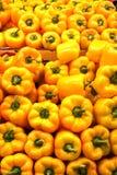 Kolorów żółtych pieprze Obraz Stock