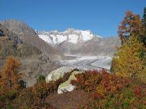Kolory Jesień W Aletsch Terenie obraz stock