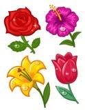 kolory ustawiający Zdjęcia Royalty Free