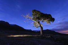 kolory wykładają noc fotografię Fotografia Royalty Free