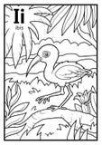 Kolorystyki książka, bezbarwny abecadło List Ja, ibis royalty ilustracja