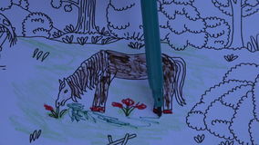 Kolorystyki książka dla dzieci z koniem, 4K zbiory wideo