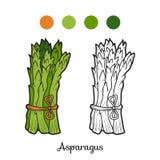 Kolorystyki książka: owoc i warzywo (asparagus) Obraz Royalty Free