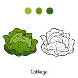 Kolorystyki książka: owoc i warzywo (kapusta) ilustracji
