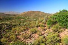 Kolosalny jamy góry parka widok zdjęcia stock