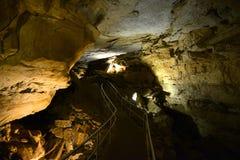 Kolossal grottanationalpark, USA fotografering för bildbyråer