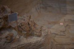 Kolossal plats av Hot Springs, South Dakota museum royaltyfri fotografi