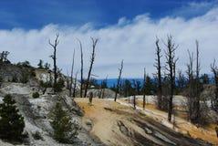 Kolossala terrasser, Wyoming Arkivbilder