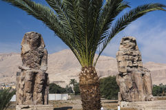 Kolosse von Memnon in Luxor Lizenzfreies Stockfoto