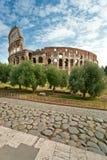 kolosseum Italy majestatyczny Rome Obrazy Stock