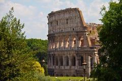 Kolosseum przez drzew Obrazy Royalty Free