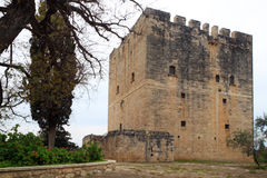 Kolossi castle Royalty Free Stock Photo