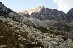 Kolovy stit mountain peak stit in High Tatras mountains royalty free stock photo