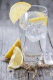 Kolsyrat vatten med citronen Royaltyfri Fotografi