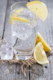 Kolsyrat vatten med citronen Fotografering för Bildbyråer