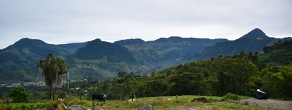 Kolumbia wieś Szeroka z gospodarstwem rolnym zdjęcia stock