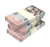 Kolumbianische Pesos lokalisiert auf weißem Hintergrund Lizenzfreies Stockfoto