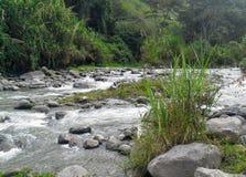 Kolumbianischer Fluss Stockfoto
