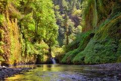 Kolumbien-Schlucht-Wasserfall im Sommer Oregon USA Stockfotos