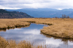 Kolumbien-Schluchtsteuerbarbürstengrasland-Gebirgshimmel Lizenzfreie Stockfotografie