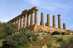 kolumn hera świątynia Fotografia Stock