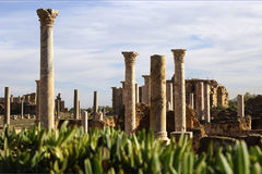 kolumny rzymskie Obrazy Royalty Free