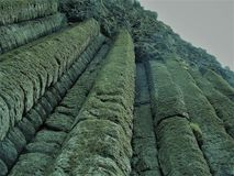 Kolumny skały przy giganta drogim na grobli zdjęcia stock