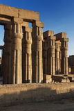 Kolumny w świątyni Luxor zdjęcia royalty free