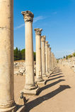 Kolumny w Ephesus Zdjęcie Stock